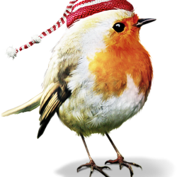 ldavi-feathersandmittens-littlerobin4.th.png