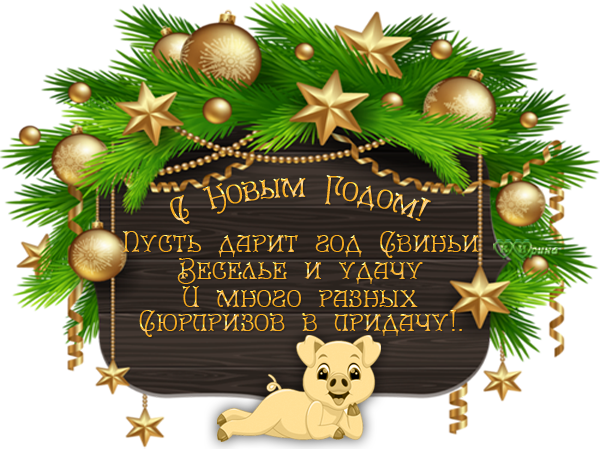 NOVOGODNYY1.png