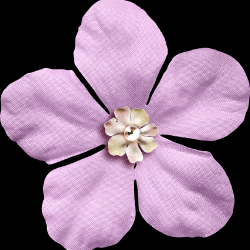 KMILL_flower1.th.png