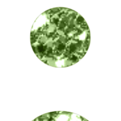 LYBIMYE-KANIKULY-121.th.png