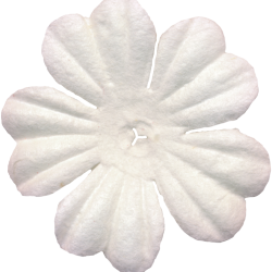 lliella_flower1.th.png