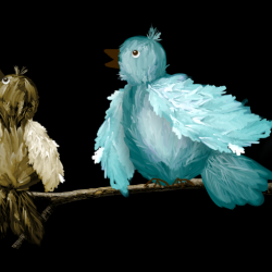 mfisher-birds1.th.png