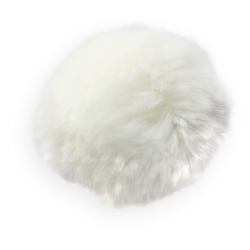 mfisher-pompon1-sh.th.png