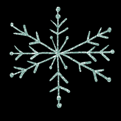 mfisher-snowflake1-sh.th.png