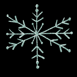 mfisher-snowflake1.th.png