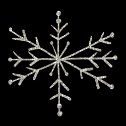 mfisher-snowflake1a-sh.th.png