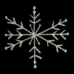 mfisher-snowflake1a.th.png