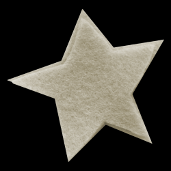 mfisher-star2a.th.png